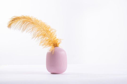 Large yellow feather in a small pink ceramic vase on a white background