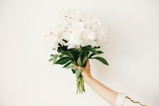Hand holding peony bouquet on white wall background. Stylish white peonies in florist hand. Hello spring wallpaper. Happy Mothers day. Wedding arrangement