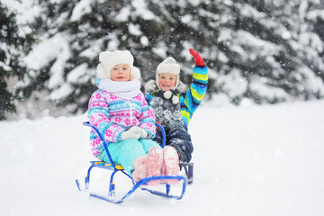small children-a boy and a girl ride a sled on the background of the forest and snow. Winter entertainment