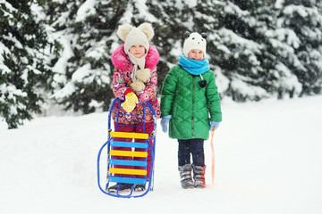 two little girl friends ride a sled on the background of snow and Christmas trees. Winter fun