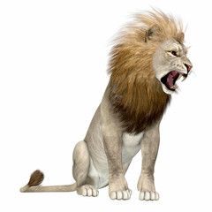 North America Lion - The American lion lived as a megafauna predator during the Pleistocene Period of North America.