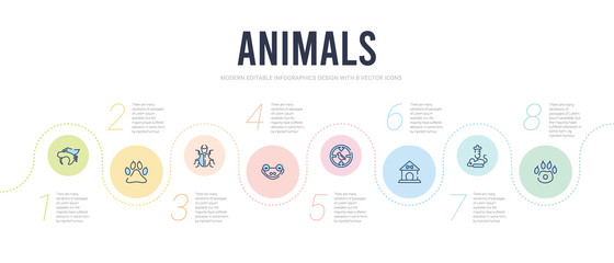 animals concept infographic design template. included pawprint, animal testing, dog house, hunt, animal, insect icons