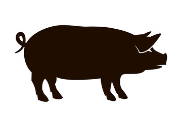 monochrome illustration with silhouette of pig isolated on white background