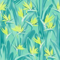 Oiseau de paradis fleur tropicale modèle sans couture de vecteur. Conception d& 39 impression de tissu de plantes tropicales bohèmes. Fleur tropicale de plante sud-africaine de fleur de grue, strelitzia. Imprimé textile fleuri.