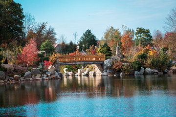 Landscape shot of the bridge at the japanese gardens in Grand Rapids Michigan during the fall