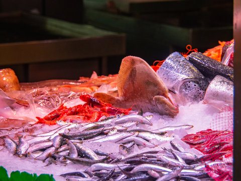 Different kinds of frozen fish and seafood in market ice box, medium view. Sea foods background. Selective soft focus. Blurred background