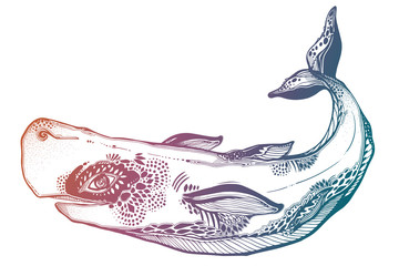 Highly detailed tribal wild sperm whale dangerous sea animal in geometric style.