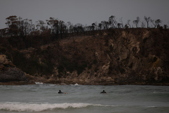 Surfers paddle on their surfboards as burnt bushland is seen in the background in Mckenzie beach near Malua Bay