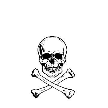 どくろ 頭蓋骨 骨 ドクロ 髑髏 パイレーツ 海賊