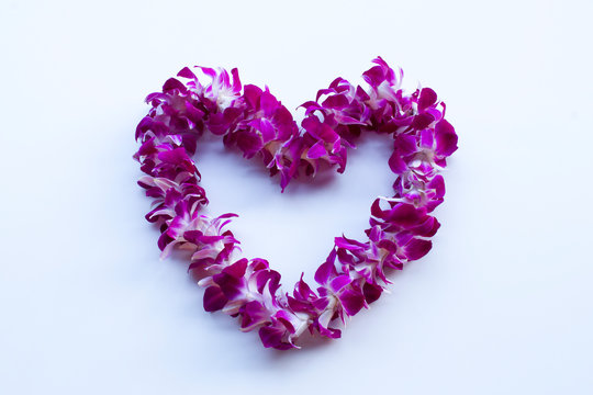 Hawaiian lei, a wreath of orchid flowers, isolated on a white background.