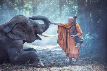Thailand Buddhist monks with elephant is traditional of religion Buddhism on faith Thai people Fotomurales