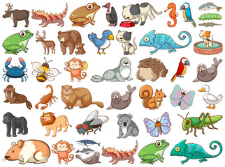 Poster Kids Large set of wildlife with many types of animals land and sea