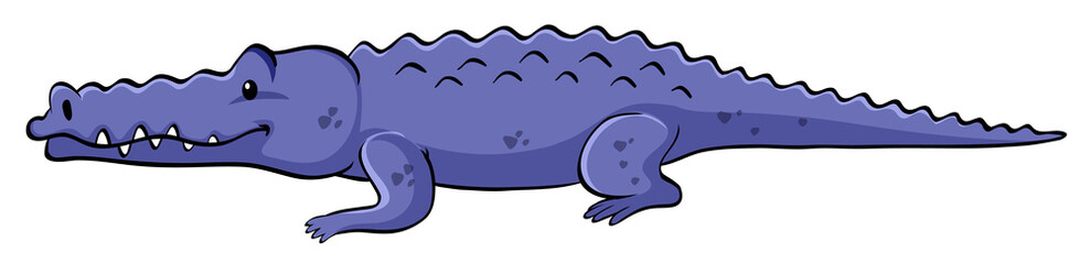 Blue crocodile on white background