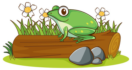 Foto op Canvas Kids Isolated picture of frog on log