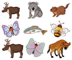 Foto op Canvas Kids Large set of wildlife with many types of animals