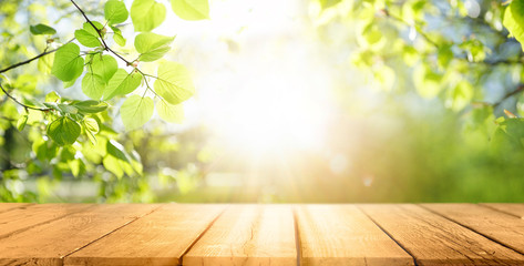 Foto op Aluminium Tuin Spring beautiful background with green juicy young foliage and empty wooden table in nature outdoor. Natural template with Beauty bokeh and sunlight.