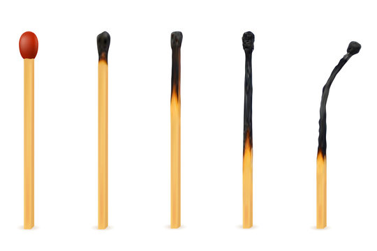 wooden burned and extinct match vector illustration
