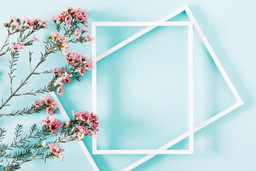 Beautiful flowers composition. Blank frame for text, pink flowers on pastel blue background. Valentines Day, Easter, Birthday, Happy Women's Day, Mother's day. Flat lay, top view, copy space