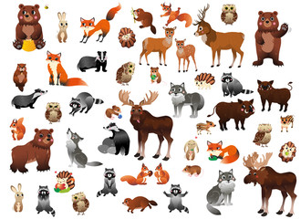 Big cartoon forest animals vector set for children. Mega collection of animals in different postures for kids. Isolated on white background