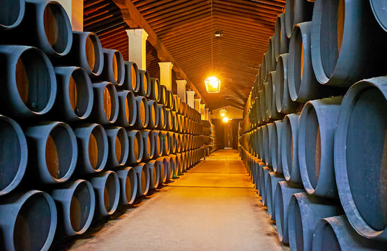 Visit Bodegas Tio Pepe winery, Jerez, Spain