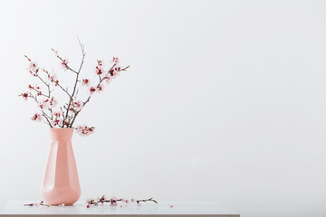 flowering cherry branch in vase on white background