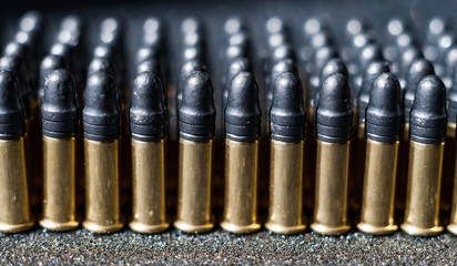Rows of small 22 caliber bullets
