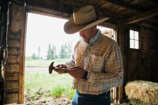 Rancher examining horseshoe in barn