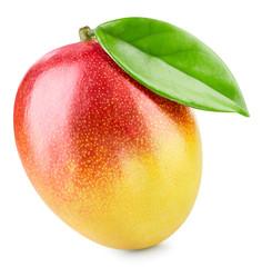 Mango, one fruit with leaf isolated. Mango Clipping Path. Ripe fresh best mango.