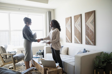 Financial advisor and woman handshaking meeting in living room