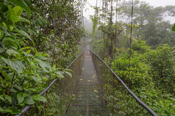 View of Cloud Forest Canopy Walkway, with suspended bridge at natural rainforest park in Costa Rica.