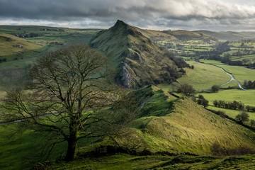 Foto op Canvas Pistache landscape in the mountains