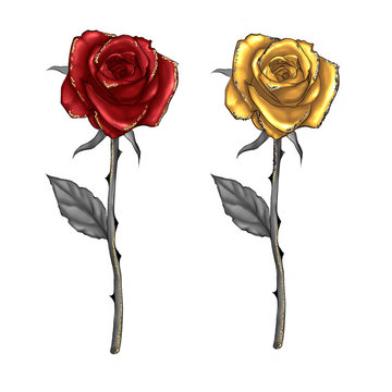 HAND DRAWN ILLUSTRATION OF LONG STEM ROSES RED AND GOLD