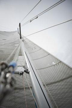 Towering sailboat sail