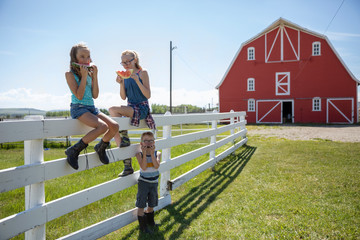 Brother and sisters eating watermelon on sunny rural farm fence
