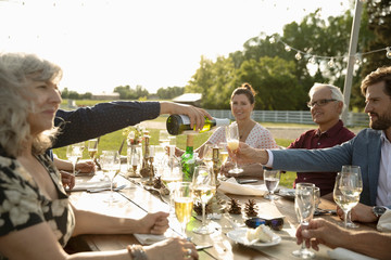 Friends drinking champagne and wine at sunny garden party patio table