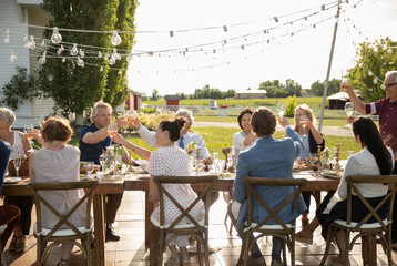 Friends celebrating, toasting wine glasses at sunny garden party table