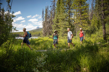 Mature couples hiking in sunny forest, Alberta, Canada