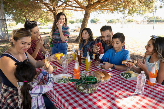 Latinx family enjoying barbecue lunch in park