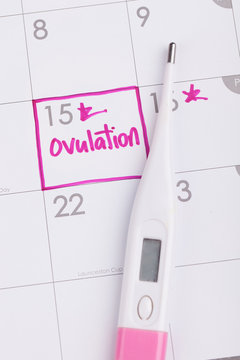 Ovulation and Basal Body Temperature Thermometer