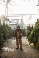 Worker with clipboard and saw working at Christmas tree market