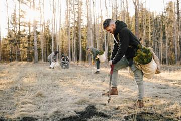 Male volunteer planting trees in woods