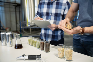 Brewers examining hops in distillery