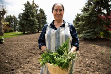 Portrait senior woman gardening, harvesting vegetables in sunny garden