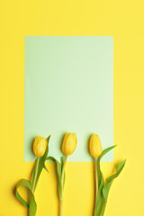 Flowers and blank card on color background