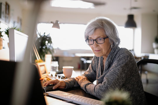 Focused senior businesswoman working at laptop in office