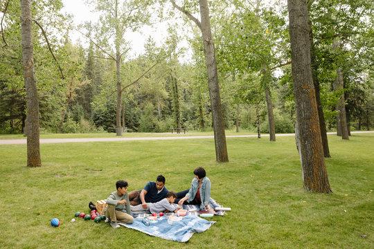 Family having picnic in urban park