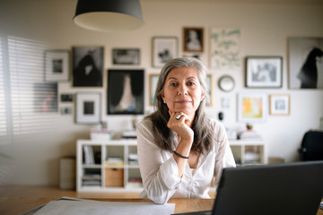 Portrait confident creative businesswoman working at laptop