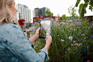 Woman with digital tablet camera photographing flowers in urban community garden