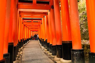 Photo sur Plexiglas Rouge 日本京都伏見稲荷大社の千本鳥居