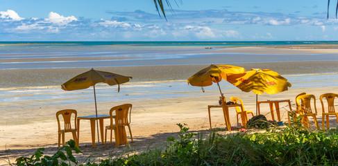 Beaches of Brazil - Ponta de Mangue Beach, Alagoas